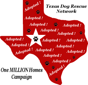 Texas Dog Rescue Network Feed